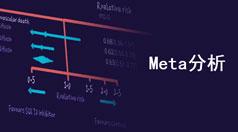 Meta 分析的10个问题:从理论概念到操作实践